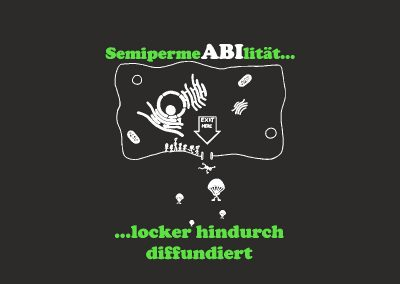 429_Georg-Christoph-Lichtenberg-Schule_Ober-Ramstadt_Goncar